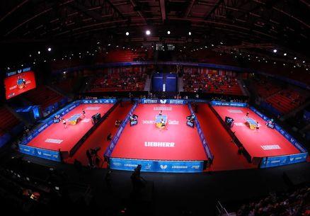 نگاهی به نتایج تیم ملی تنیس روی میز در مسابقات قهرمانی جهان/ نوشاد، چهره درخشان در هالمستاد