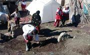 نیاز فوری زلزله زدگان به نیروهای امدادی/ قطع شبکه تلفن همراه در منطقه