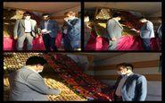 تداوم سرکشی از بازار میوه و تره بار شهر ایلام