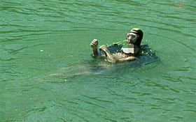 لحظه کشف جسد مرد غرق شده در بند رودخانه لیلان چای + فیلم