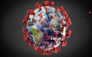پنجشنبه 26 تیر| تازه ترین آمارها از همه گیری ویروس کرونا درجهان