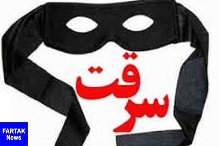 سارقان مسلح در دهلران دستگیر شدند