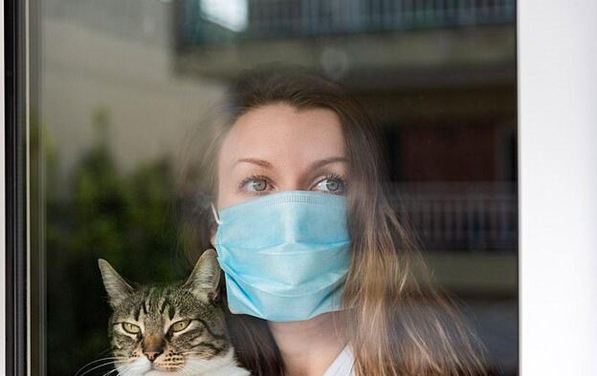 افراد مشکوک به کرونا از حیوانات خانگی خود دوری کنند