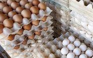 ضوابط واردات تخم مرغ در سال ۹۷ اعلام شد+سند