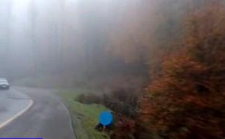 طبیعت چشمنواز و دیدنی در «سیبن» + فیلم