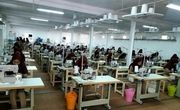 نرخ مشارکت اقتصادی در زنجان ۱.۶ درصد افزایش یافت