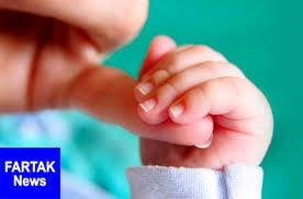 ۱۰ ماده غذایی برای افزایش شیر مادر