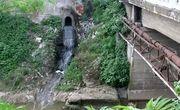مشکلات زیستمحیطی شهر رشت بسیار جدی است
