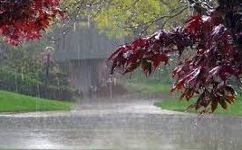 فعالیت سامانه بارشی تا فردا ادامه دارد