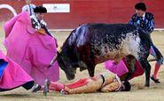 حمله وحشتناک گاو به سه مرد در مراسم گاوبازی + فیلم