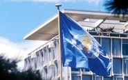درخواست مدیر کل سازمان جهانی بهداشت: جستجو برای منشأ کرونا را سیاسی  نکنید