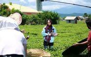 فیلم ایرانی در سرزمین رونالدو