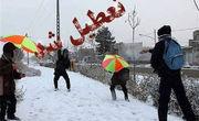 بارش سنگین برف برخی از مدارس استان اردبیل را تعطیل کرد