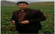 پیش بینی توسعه بیش از ۱۰۰ هکتار باغ در شهرستان کرمانشاه