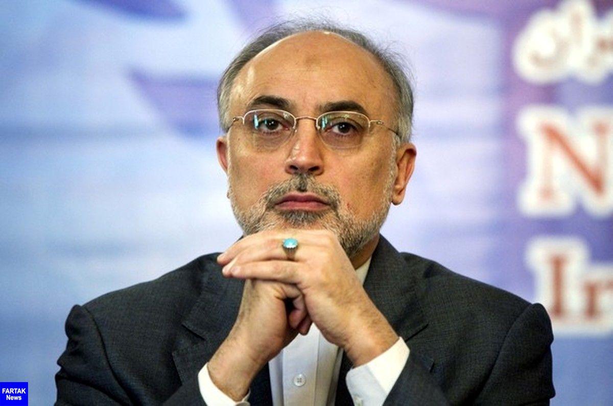 علی اکبر صالحی: در پیاده کردن قانون مجلس در ابعاد فنی هیچ مشکلی نداریم