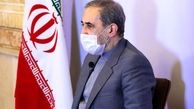 ولایتی: امنیت ایران بدون آرامش همسایگان ممکن نیست