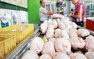 منتظر فراوانی مرغ در بازار باشید