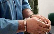 دستگیری قاتل جوان نوشهری در کمتر از ۳ ساعت