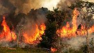 آتش سوزی در ارتفاعات گچساران به طور کامل مهارشد