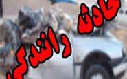جزئیات تلفات تصادف در جاده بندر شهید رجایی